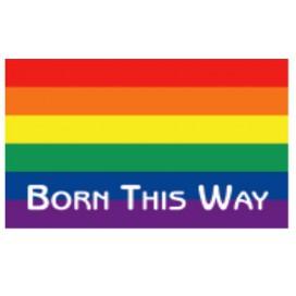 "Pride Items Autocollant Rainbow ""Born This Way"" 5 x 7.6 cm"
